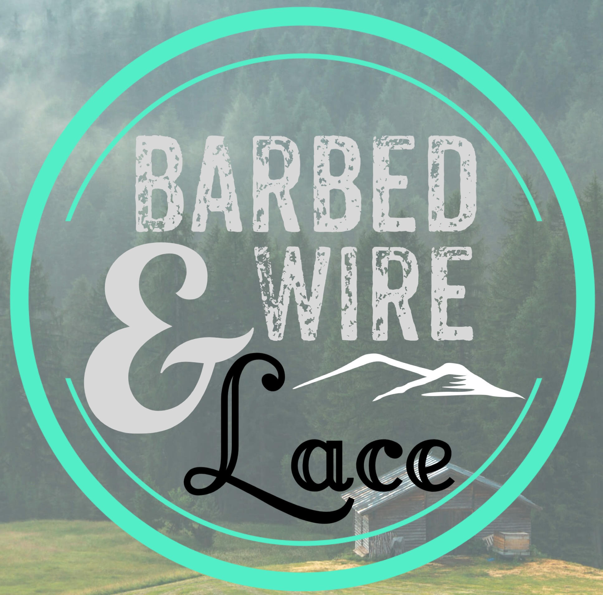 Barbed Wire and Lace